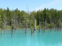 青い池イメージ